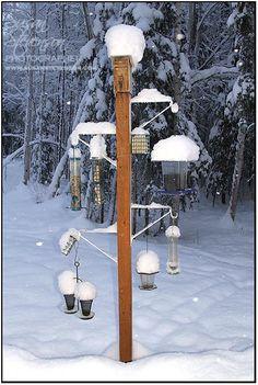 Bird feeding station. bird feeders and snow