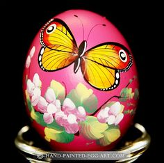 Hand-Painted-Egg-Art. Designs by Margit Jakab. Butterfly Garden