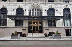 HOTEL CANOPHY - Google 검색