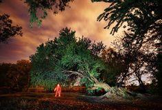 Tutorial Fotografía Nocturna - ¿Como hacer un hombre de luz? Light Painting