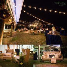 Ulele tampa wedding ulele wedding tampa pinterest enchanted tampa bay watch candles on outside tables junglespirit Images