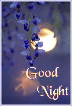 Good Night Msg, Good Night Love Messages, Good Night Funny, Photos Of Good Night, Beautiful Good Night Images, Good Night Love Images, Good Night Prayer, Good Night Friends, Good Night Blessings