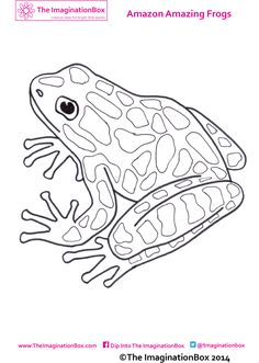 Clip Art Frogs Green Black Poison Dart Frog coloring page