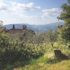 Primavera nella campagna toscana. Ecco lasciatemi qui. #Toscana #spring #countryside