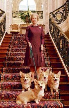 Queen Elizabeth & her Royal Corgis