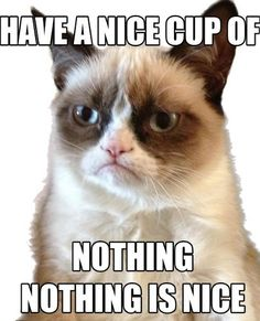Top 10 Grumpy Cat Memes In 2014 - EveryList.xyz