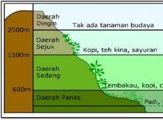 Klasifikasi iklim menurut junghuhn