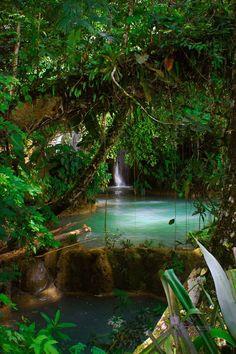 Las Cascadas de Agua Azul in Chiapas, Mexico.