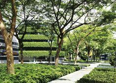 Cicada Landscape Architecture – 120 фотографий
