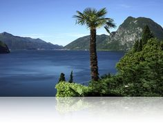 Lago di Lugano Switzerland--simply paradise on earth! repinned by www.gorara.com