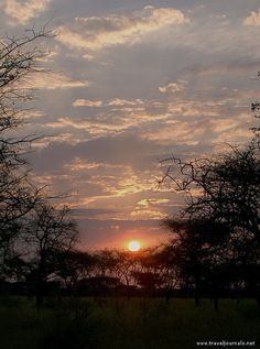 Sun rise at Serengeti National Park. TANZANIA