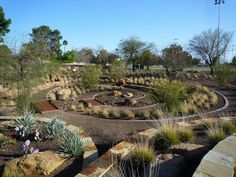 zero landscaping ideas | Xeriscape demonstration garden and water retention area in Scottsdale ...