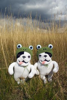 Fronchies in froggy hats