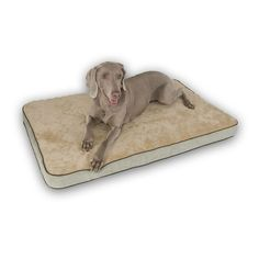 K and H Pet Memory Sleeper Rectangle Pet Bed - 35'' x 23'', Green