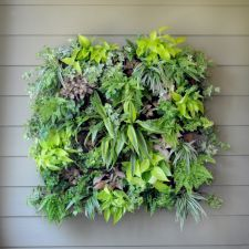 "Living Wall Planters are a side planting system that use replaceable 14"" square coco-liners, designed by Pamela Crawford. Get yours from @Kinsman Garden! #gardening #livingwalls"