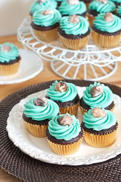 chocolate cupcakes with whipped vanilla buttercream and chocolate shells