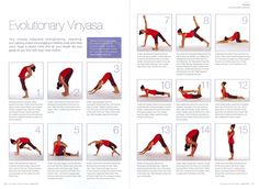 yoga poses for weight loss for beginners pdf  beginner