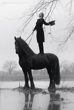 I've wanted a Friesian since I can remember. Also, this is a really cool photo.