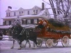 My Favorite commercial Budweiser Christmas Commercial. I would love to see these horses prancing down our streets one day! Christmas Past, Christmas Music, Christmas Movies, All Things Christmas, Vintage Christmas, Xmas, Budweiser Commercial, Clydesdale Horses, Friesian Horse
