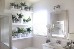 3 Luminous Simple Ideas: Artificial Plants Ideas Home Decor artificial plants office pots.Artificial Flowers Tips artificial plants living room pots. Small Indoor Plants, Indoor Planters, Cool Plants, Ivy Plants, Cheap Artificial Plants, Artificial Plant Wall, Artificial Flowers, Bathroom Plants, Bathroom Wall Decor