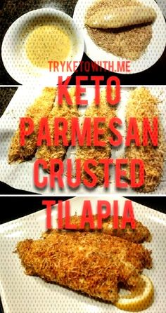 websiteketo recipeyou parmesan recipes tilapia recipe keto find more and our can on Keto Parmesan Tilapia RecipeYou can find Keto tilapia recipes and more on our websiteKeto ParmesanYou can find Keto tilapia recipes and more on our website Keto Tilapia Recipe, Tilapia Recipes, Parmesan Crusted Tilapia, Parmesan Recipes, Baby Food Recipes, Dairy Free, Diet, Meyou, Canning