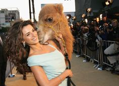 """Actress #Penelope #Cruz walks a camel down the carpet at the premiere of the film """"Sahara"""" on April 4, 2005 at Grauman's Chinese Theatre in Hollywood, California. (Photo by Vince Bucci/Getty Images) Check more at http://clipinhairextensions101.com"""