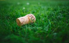 recycling in the garden corks