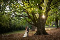 #nancyavon from www.bit.ly/jomfacial Sharing a light moment with your love dear! Daylesford Botanical Gardens by gromovphotography