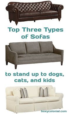 How to Have a Pretty Sofa While Also Having Dogs, Cats, and Kids - a hilarious guide to all your couch needs.  #couch #sofaguide
