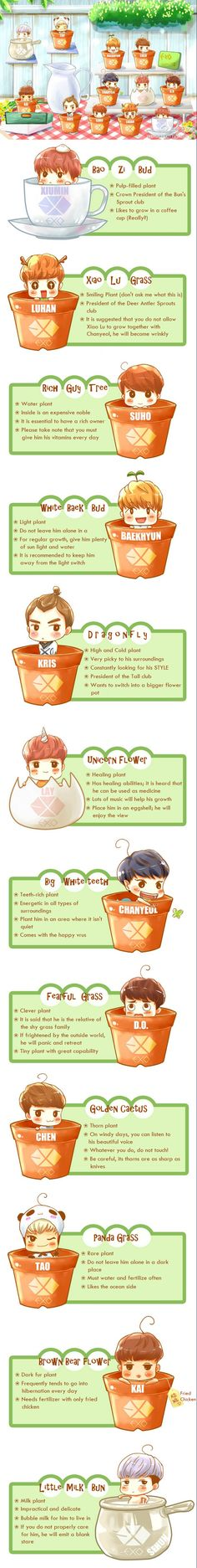EXO as plants, and how to take care of them. But why shouldn't the Luhan plant be near the Channie plant?