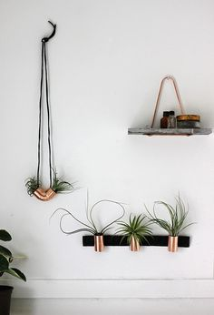 copper airplant holders #homedecor #interiordesign