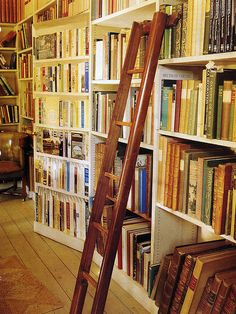 a library with a swinging ladder... all I ever wanted since the first time I saw Beauty and the Beast