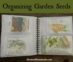 Organizing Garden Seeds- An easy way to sort, organize and store garden, herb and flower seeds | Montana Homesteader