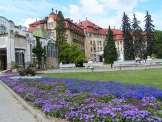 Piestany: concert and a wedding reception