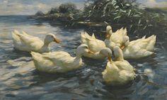Six Ducks,Alexander Koester