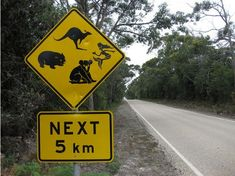 Music N' More: Even More Funny Road Signs