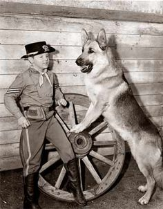 RinTinTin (September 1918 – August 10, 1932) was a male German Shepherd dog rescued from a World War I battlefield  #germanshepherddogs
