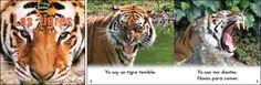 Los tigres—by Claire Vial & Graham Meadows Series: Zoozoo en la Selva GR Level: D Genre: Spanish, Informational