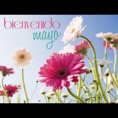 Bienvenido, mes de mayo