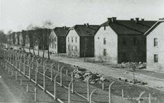 Death Camp after liberation (Auschwitz-Birkenau State Museum Archives)
