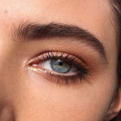 eyeshadow natural eyebrows thick