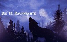 Die geheimnisvolle Zeit der Rauhnächte Movie Posters, Fictional Characters, Blessing, Xmas, Consciousness, Film Poster, Popcorn Posters, Billboard, Fantasy Characters