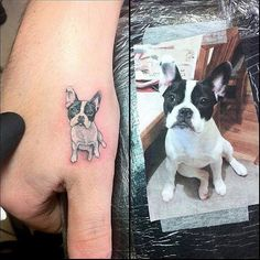 teeniest dog tattoo ever! really well done for the size, detail and color.                                                                                                                                                                                 More