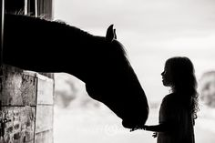One touch is all it takes to make a girl fall in love with horses.  - Photo by Shelley Paulson
