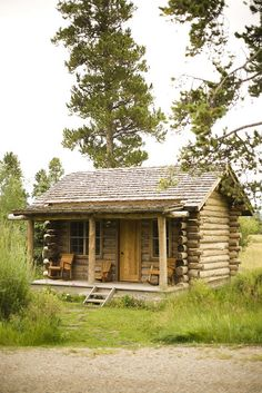 itty bitty cabin, with a kitchen and a tiny bathroom and I am good to go. I can see the chickens in the back along with a goat or two, oh and of course my pets, dogs and cats.