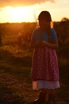 Abendsonne in der Wahner Heide an einem sehr warmen Oktobertag!