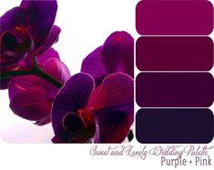 New Wedding Purple Pink Color Pallets Ideas Purple Pink Color, Purple Color Palettes, Shades Of Purple, Plum Color, Dark Purple, Red Colour, Purple Palette, Purple Gold, Flower Colour