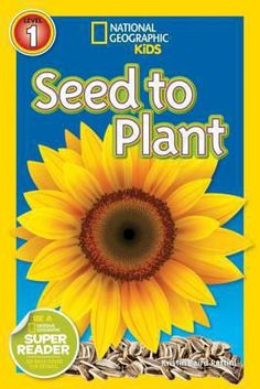 CC Cycle 1, Week 9 - Cover image for Seed to plant / Kristin Baird Rattini.