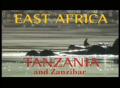 Traveler Ian Wright begins his African adventure on the historic island of Zanzibar. Zanzibar is a former slave trading center and it is here that he discovers the…