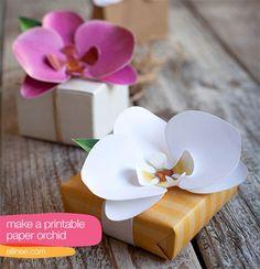 Descargable gratuito y DIY para hacer una orquidea de papel |